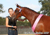 Nicole Kullen with her filly 'Nikshar NaSala' Awarded Top 5 Yearling Arabian Warmblood Filly at the East Coast Arabian Championships at S.I.E.C - Feb 2007