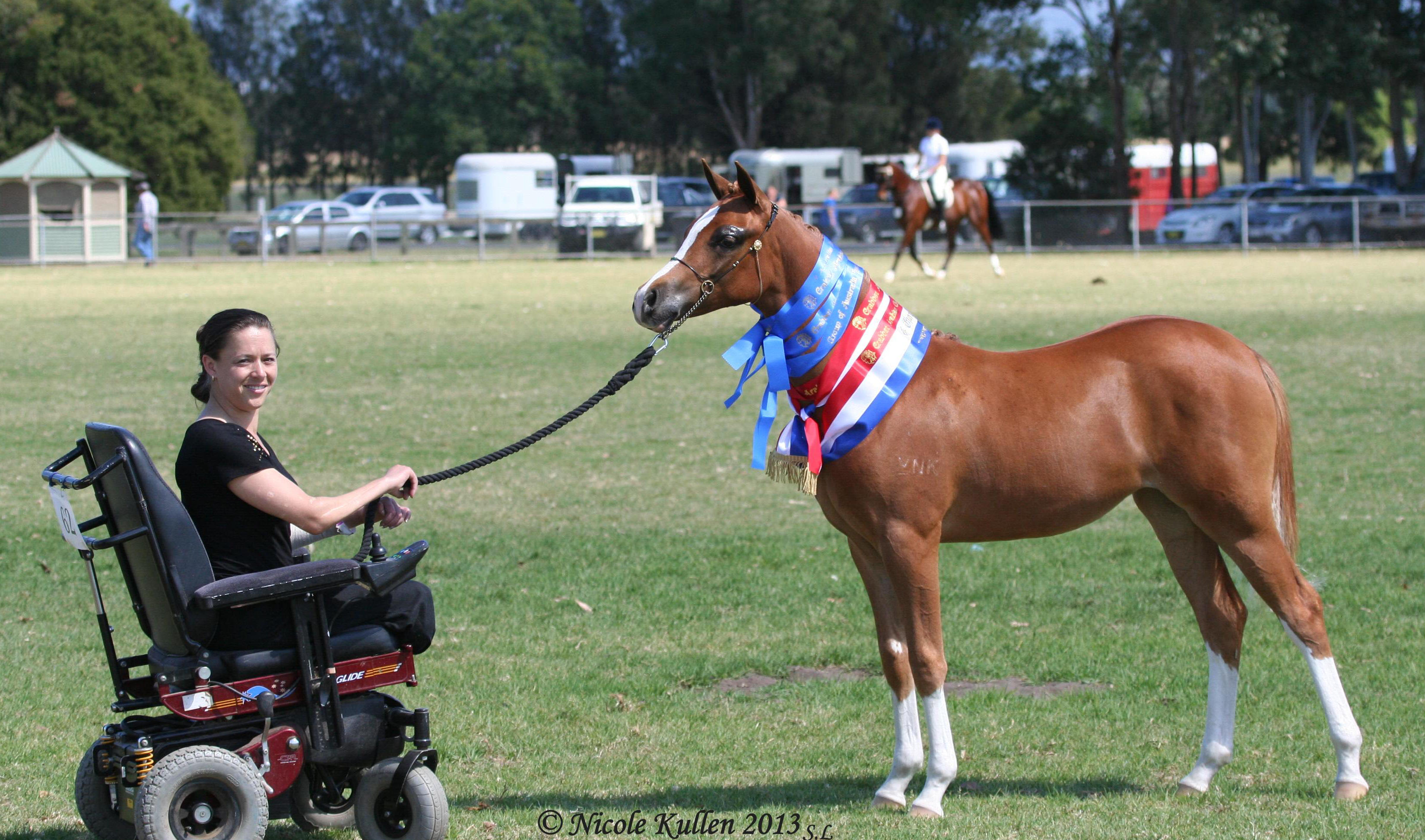 Arabian Pony, Part Welsh filly NIKSHAR VALENTINAH ROSE (Nikshar Valentino x B. Country Rose) shown by Nicole Kullen successfully from her electric wheelchair.
