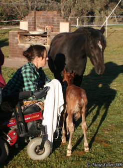 Nicole & her beautiful mare Brampton Country Rose & her 2009 colt foal by Nikshar Alladin