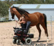 'Nikshar Wildfire' on the 2 Feb 2007 with owner/breeder Nicole Kullen leading him from her electric wheelchair.