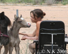 Nicole Kullen with Welsh B, Arabian Pony colt foal 'Nikshar Alladin' & his dam 'Owendale Flower Girl'